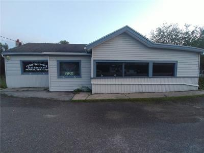 Commercial For Sale: 16214 Ridge Road