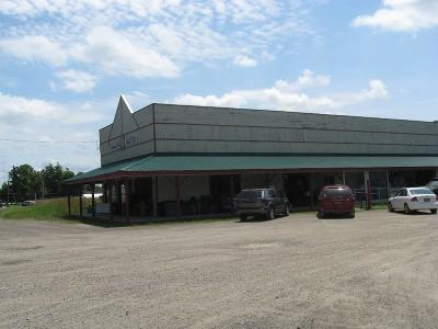 Commercial For Sale: 6749 State Route 415