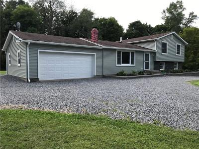 Phelps Single Family Home Active Under Contract: 936 S Marbletown Road