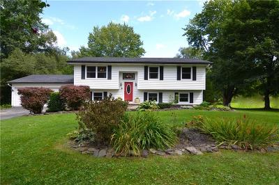 Marion Single Family Home For Sale: 4794 Williamson Road/Rt 21