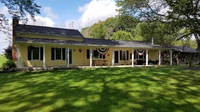 Henrietta Single Family Home For Sale: 420 Williams Road