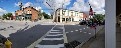 Monroe County Commercial For Sale: 4 N Main Street