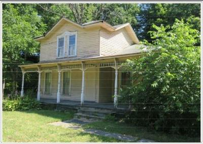 Single Family Home For Sale: 9562 Route 60