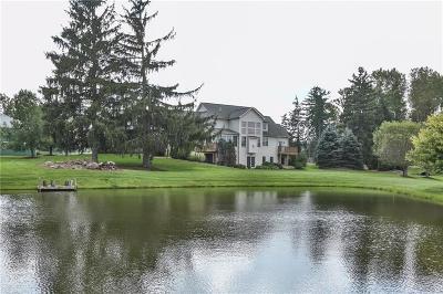 Cayuga County, Monroe County, Ontario County, Seneca County, Yates County Single Family Home For Sale: 127 Blazey Road