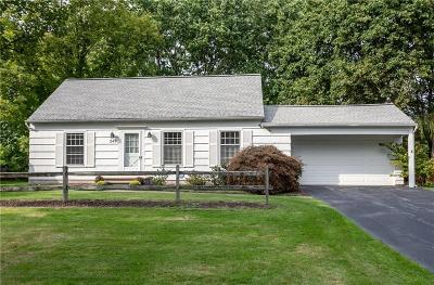 Monroe County Single Family Home For Sale: 249 Dunning Avenue
