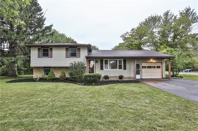 Rochester Single Family Home For Sale: 1 Courtright Lane