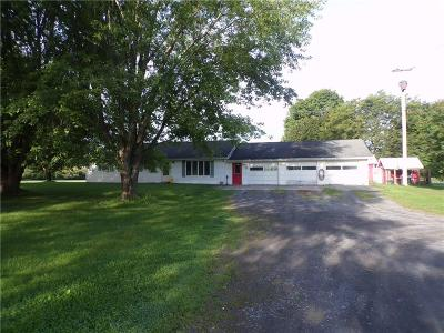 Single Family Home For Sale: 2470 State Route 14