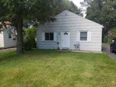 Rochester Single Family Home For Sale: 206 Mosley Road