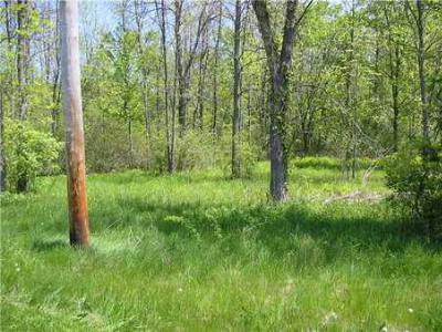 Residential Lots & Land Sold: 6440 County Line Rd