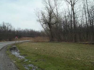 Chili Residential Lots & Land A-Active: 880 Chili Center Coldwater Road