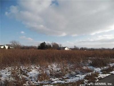Webster Residential Lots & Land A-Active: 1097 Plank Road