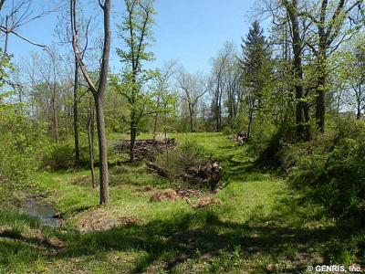 Monroe County Residential Lots & Land A-Active: 1309 Lake Road