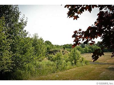 Ontario County Residential Lots & Land For Sale: County Road 10