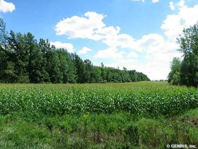Monroe County Residential Lots & Land A-Active: Frisbee Hill Road