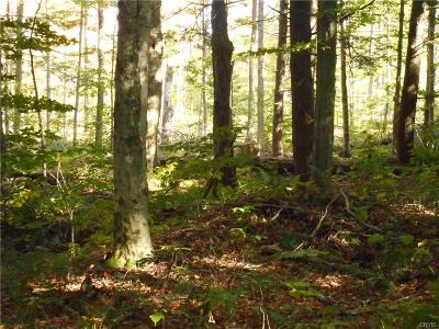 Forestport Residential Lots & Land A-Active: 00 Lone Pine Drive
