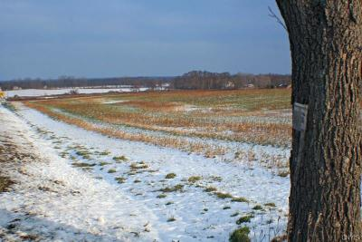 Residential Lots & Land C-Continue Show: 7708 Townline Road