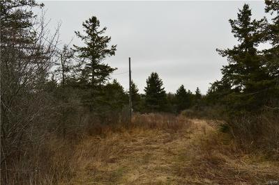 Lyme NY Residential Lots & Land A-Active: $42,000