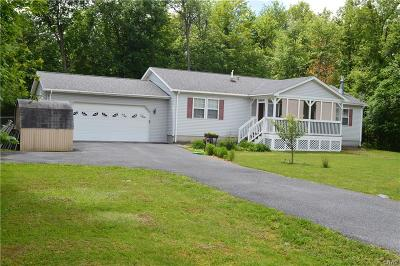 Clayton Single Family Home A-Active: 16254 County Route 181