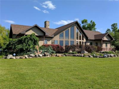 Single Family Home For Sale: 32491 County Route 6