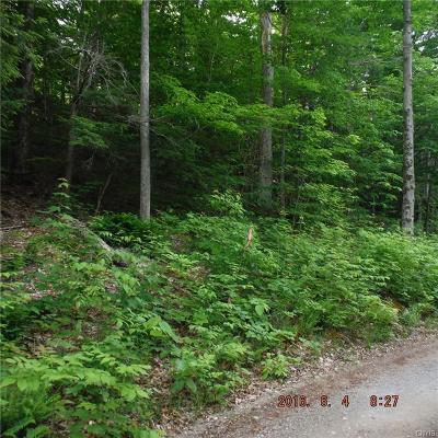 Lewis County Residential Lots & Land A-Active: 7270 Bullrock Point Road