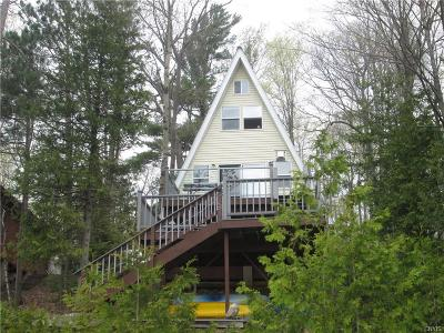 Lewis County Single Family Home A-Active: 8709 North Shore Road