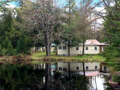 St Lawrence County Single Family Home A-Active: 53b South Shore Road