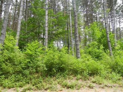 Watson NY Residential Lots & Land S-Closed/Rented: $17,500