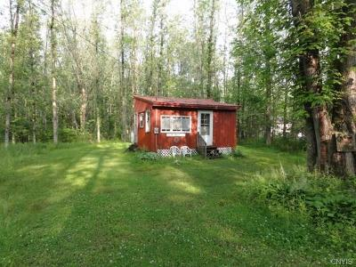 Single Family Home A-Active: 9154 Briggs Bay Road