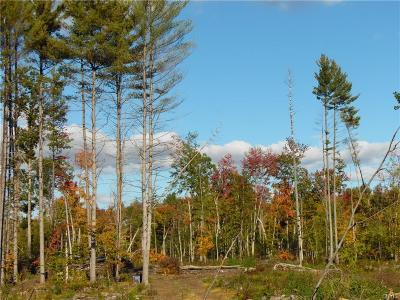 Jefferson County, Lewis County, St Lawrence County Residential Lots & Land A-Active: Lot #2 Pine Grove Road