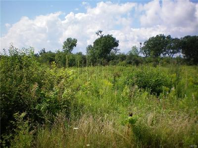 Alexandria NY Residential Lots & Land A-Active: $60,000