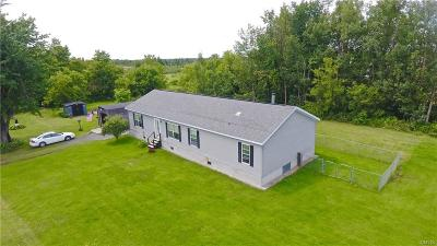 Single Family Home A-Active: 31281 County Route 30
