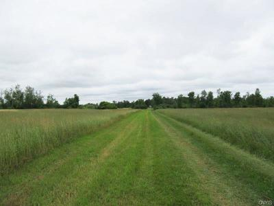 Residential Lots & Land A-Active: 24719 Co Route 59