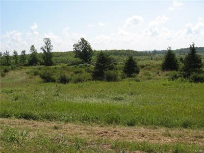 Residential Lots & Land A-Active: 33498 Shimel Road