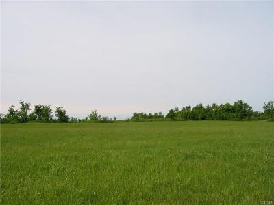 Theresa NY Residential Lots & Land A-Active: $109,600