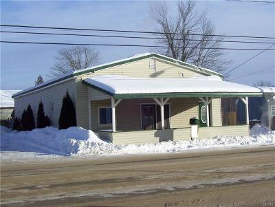 Jefferson County, Lewis County Single Family Home A-Active: 37473 County Route 25