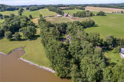 Cayuga County, Monroe County, Ontario County, Seneca County, Yates County Single Family Home A-Active: 1664 Carley Drive