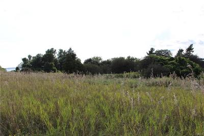 Cape Vincent Residential Lots & Land A-Active: 20 C Carleton Island Road 2