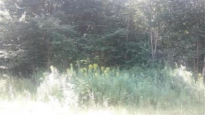 Residential Lots & Land A-Active: Off Beech Road