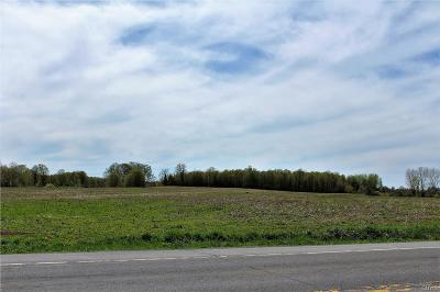 Jefferson County, Lewis County, St Lawrence County Residential Lots & Land A-Active: West State Route 26, #2