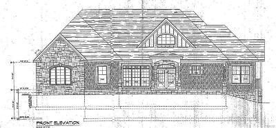 Cazenovia Single Family Home A-Active: 4580 Fox Lane