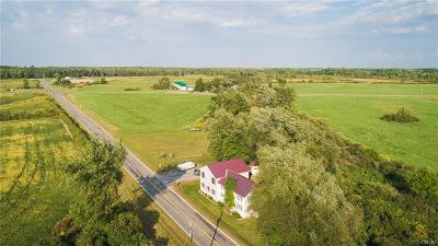 Cape Vincent Single Family Home A-Active: 33094 County Route 4
