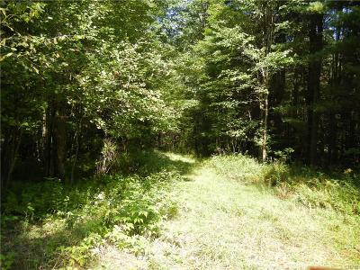 Jefferson County, Lewis County, St Lawrence County Residential Lots & Land A-Active: 7213 Kotel Road