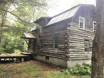 Bolivar NY Single Family Home A-Active: $79,900