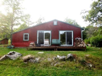 Clayton NY Single Family Home A-Active: $139,900