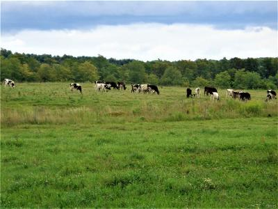 Residential Lots & Land A-Active: 3604 Pompey Center Road