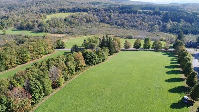 nelson Residential Lots & Land A-Active: A Old State Road