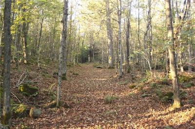 St Lawrence County Residential Lots & Land A-Active: Island Branch Road
