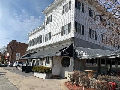 Oswego-City Commercial For Sale: 11 W Seneca Street
