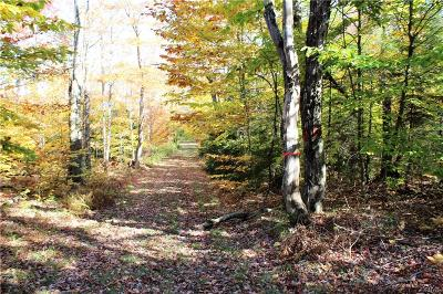 West Turin NY Residential Lots & Land Sold: $70,000