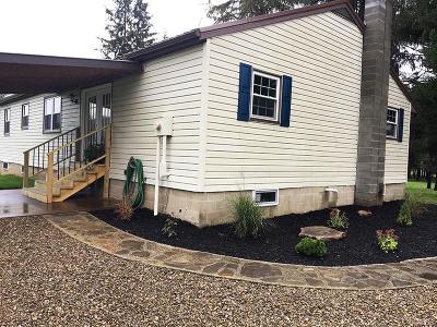 Portville Single Family Home A-Active: 425 Portville Eldred Road